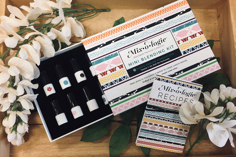 Mixologie Blending Kit