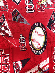1849 St. Louis Cardinals (MLB)