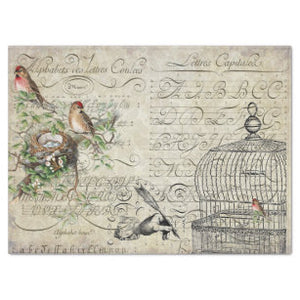 "BIRD EPHEMERA DECOUPAGE PAPER  22 1/2"" x 17"""