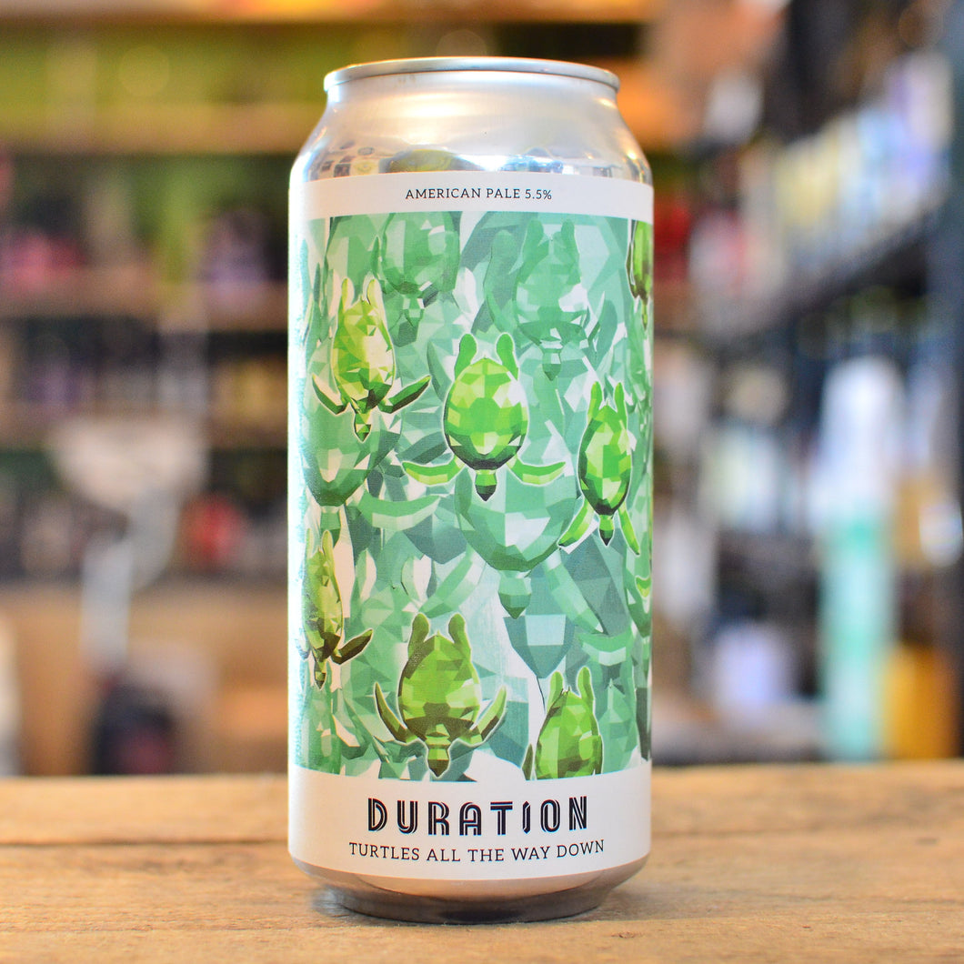 Duration Turtles All the Way Down | 5.5% | 440ml