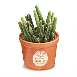 Sharp Writing Cactus Pens