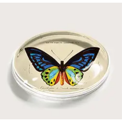 Azure Butterfly Crystal Paperweight