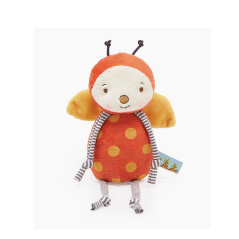 Pretty Beetles Notebook