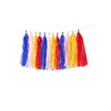 Multi Colored Tassel Garland