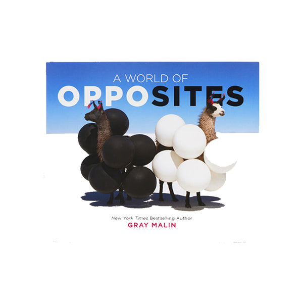 A World Of Opposites By Gray Malin
