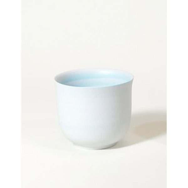 Robin's Egg Blue Porcelain Tea Cup Set