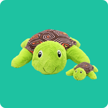 Kai the Dreamy Turtle
