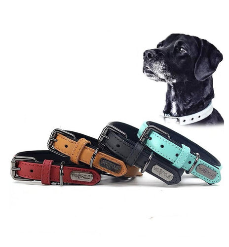 Genuine Leather Dog Collar Padded Adjustable