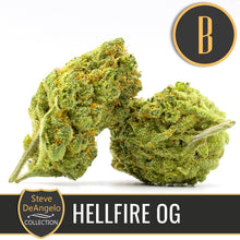 Load image into Gallery viewer, STEVE`S HELLFIRE OG