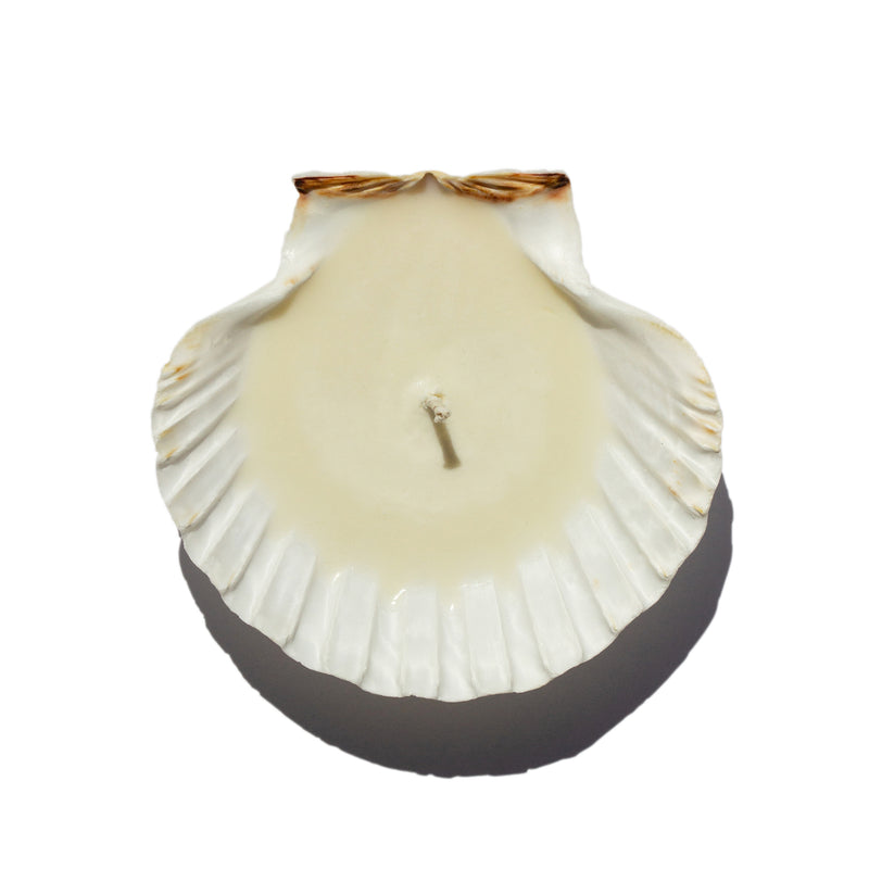 Sanctuaire-bum-cake-candle-seashell