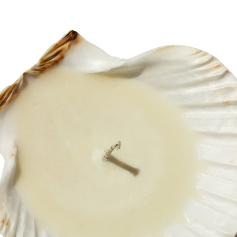 Sanctuaire-bum-cake-seashell-candle