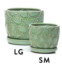 Load image into Gallery viewer, Maldives Petits Pots w/ attached saucer