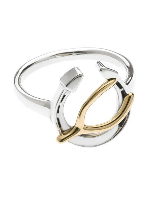 Wishing You Good Luck Horseshoe and Wishbone Ring