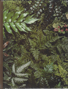 TIME-LIFE: The Encyclopedia of Gardening-Ferns