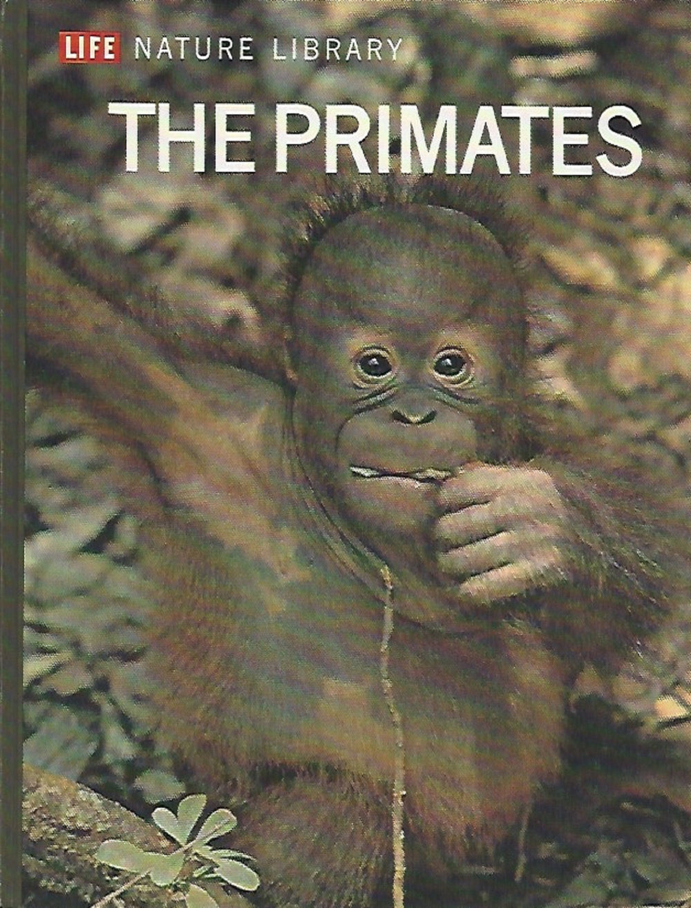 TIME LIFE: Nature Library; The Primates by Sarel Eimerl and Irven DeVore (1968)