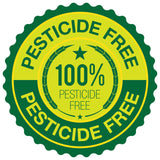 100% Pesticide Free Vegetables