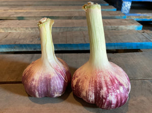 SOLD OUT! Garlic (2 cloves)