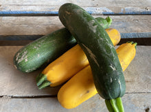Load image into Gallery viewer, SOLD OUT! Green & Yellow Zucchini (2lb bag mixed)