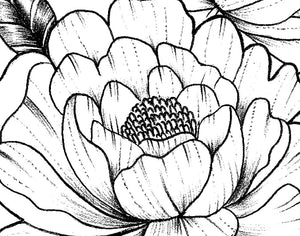 Peony half sleeve linework  tattoo design high resolution download