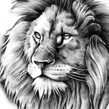 Load image into Gallery viewer, realistic lions for amazing sleeve tattoo by tattoodesignstock.com