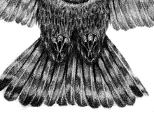 Load image into Gallery viewer, Realistic owl design download high resolution download