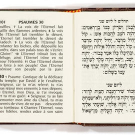 Tehillim / Psaumes (Hebrew/French)