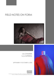 Field Notes on Form
