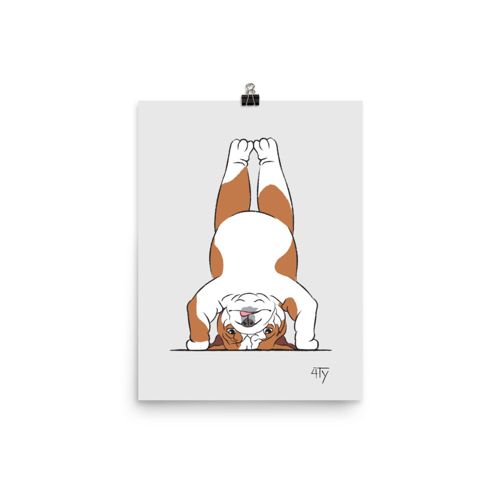 Load image into Gallery viewer, Poster, English Bulldog Yogi, Head Stand Pose, Color