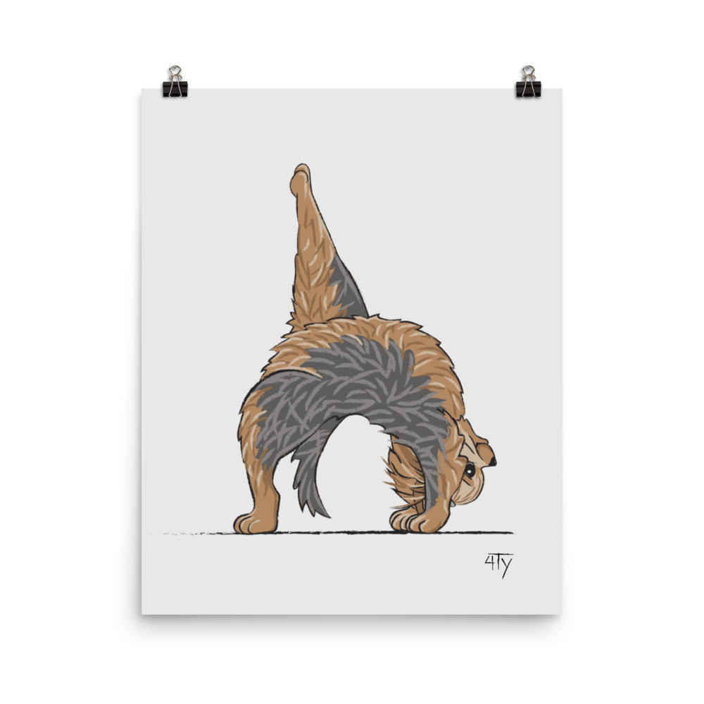 Poster, Yorkshire Terrier Yogi, Wheel Pose, Fun Nursery Décor, Yoga Studio Décor