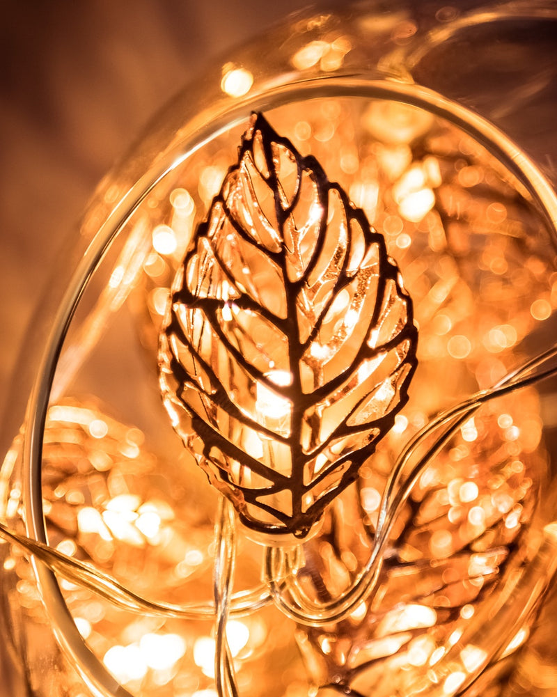 Copper Leaves Fairy Lights - Simply Special Invercargill