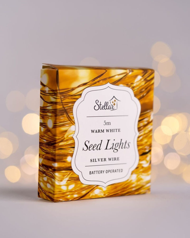 5m Warm White Silver Wire Seedlights - Simply Special Invercargill