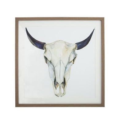 Animal Skull with natural Frame - Simply Special Invercargill