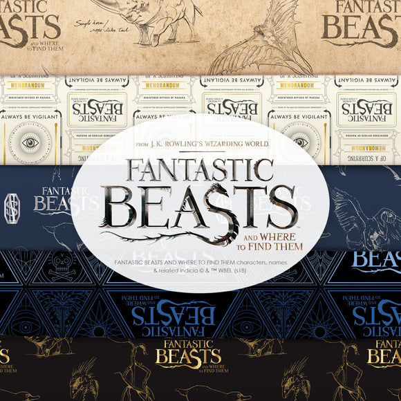 Wizarding World Fantastic Beasts and Where to Find Them Collection