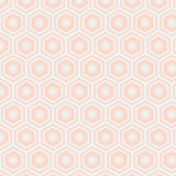 Mixology Coordinates - Honeycomb Blush