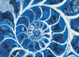 Diamond Dotz Blue Nautilus Diamond painting kit