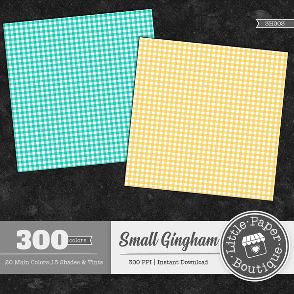 Rainbow Small Gingham Digital Paper 3H003