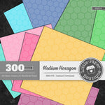 Rainbow Medium Hexagon Outline Digital Paper 3H016
