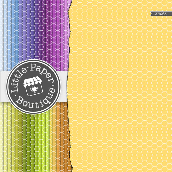 Rainbow Extra Small Hexagon Digital Paper 3H065