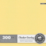 Rainbow Checker Overlay Digital Paper 3H085