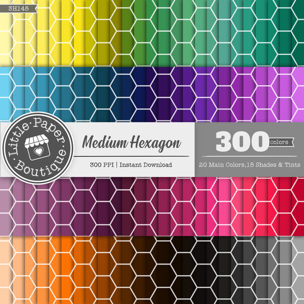 Rainbow Medium Solid Hexagon Digital Paper 3H145