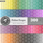 Rainbow Medium Hexagon Outline Digital Paper 3H146