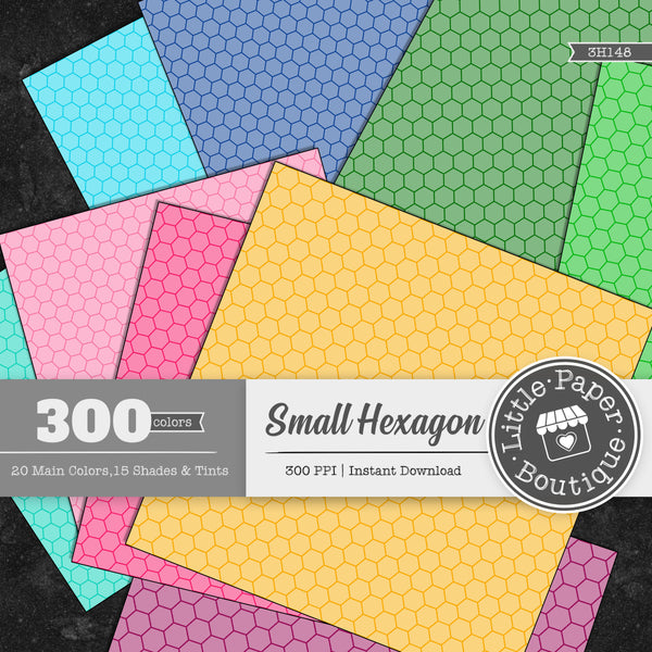 Rainbow Small Hexagon Outline Digital Paper 3H148