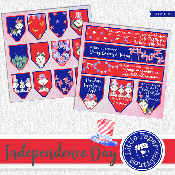 Independence Day Watercolor Ephemera Tags Digital Paper LPB3019C