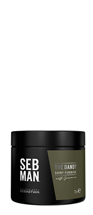 SEBMAN THE DANDY LIGHT HOLD POMADE
