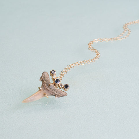 fossil sand tiger shark tooth set in 14k gold with customer supplied sapphires and diamonds