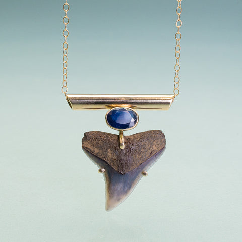 fossilized bull shark tooth set in 14k with oval sapphire and horizontal bail