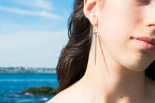 Load image into Gallery viewer, Horseshoe Crab Tail Earrings - Long Silver Spear Drops