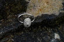 Load image into Gallery viewer, Limpet Shell Ring - Cast Seashell Ring - Sterling Silver Shell