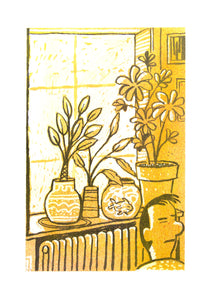 HOUSEPLANTS #5