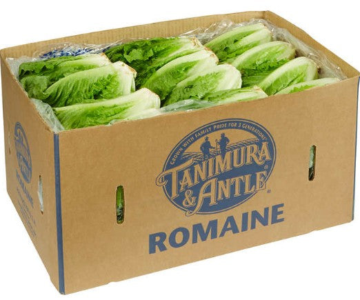 Romaine Lettuce - 24 ct